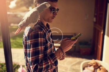 Taking Care of Your Bird's Beak