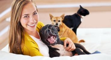Top 5 Dog Behavior Myths